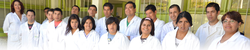 Foto de alumnos que participan en el programa de Empresas